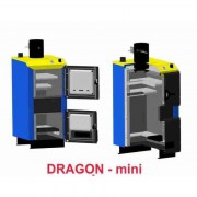 dragon_mini2